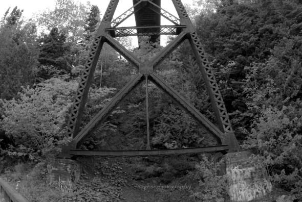 Estruture of the train bridge