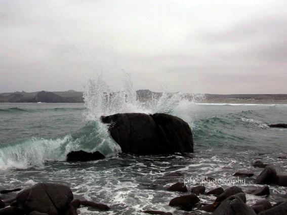 Punta de Choros, Chile