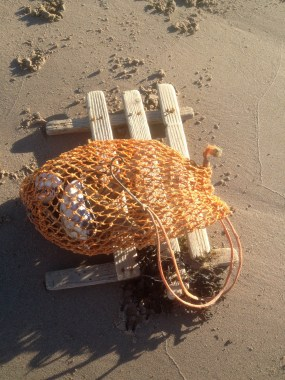 Net for the bait in the lobster cage
