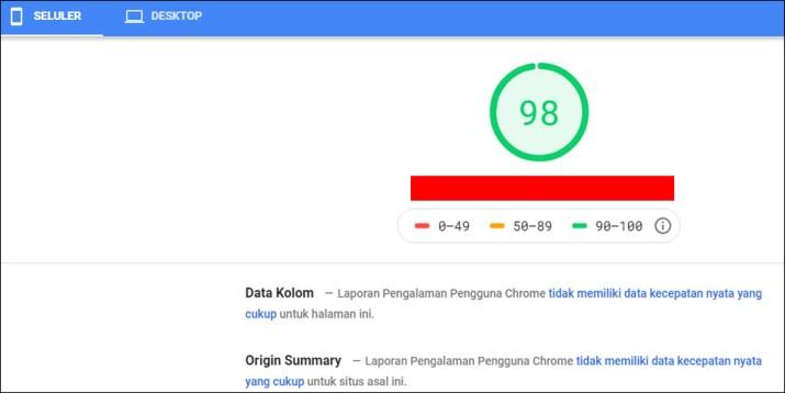 Hasil pengetesan dengan Google PageSpeeds Insight selular