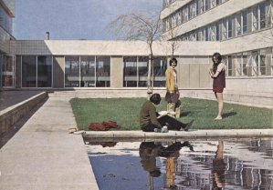 Higher Education Policy and the Robbins Report (1961-1963)