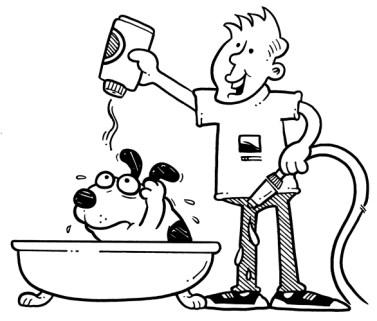 DogFamily_BathTime