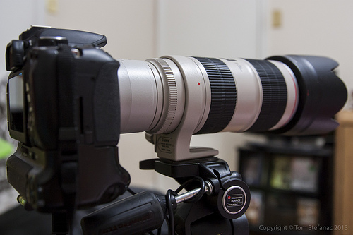 Canon EF 70-200mm f/2.8L IS II USM with a Canon 2x EF Extender III (Teleconverter) mounted on a Canon Rebel T4i / 650D body