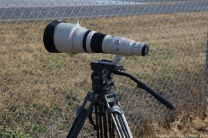 800mm / Miller Television Tripod