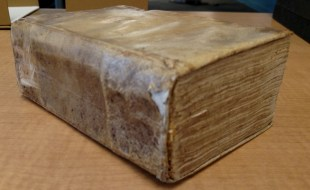 Vellum binding of