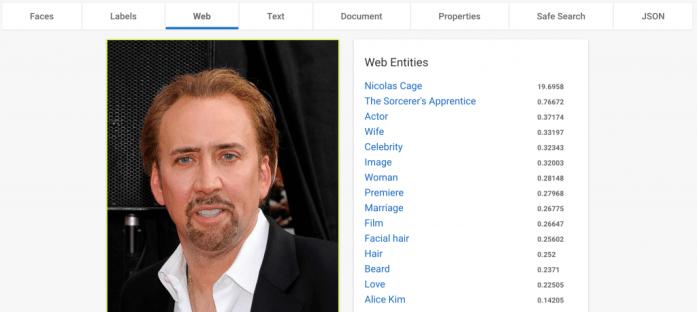 Nicolas Cage Web Entities