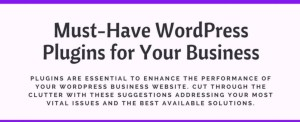 Essential WP plugins for business.