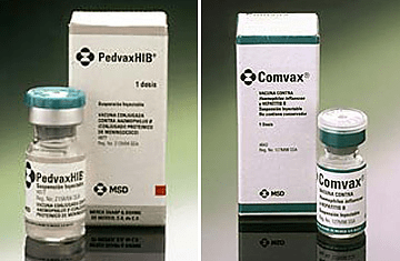 The vial stoppers of some vaccines contain natural rubber latex.