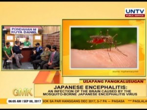 Japanese encephalitis is spread by mosquito bites.