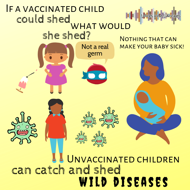 You should be worried about wild diseases, not shedding from vaccines.