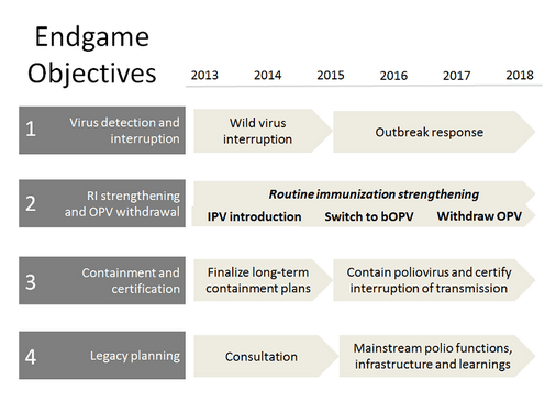 The Endgame Plan 2013-2018 succeeded in certifying South-East Asia (SEARO) as polio-free, brought the African Region closer than ever to eradication of wild poliovirus,  possibly eradicated two out of three wild poliovirus strains, set the world on the path of phased Oral Polio Vaccine (OPV) removal, stopped outbreaks in Syria and Horn of Africa, and cornered wild poliovirus circulation to a joint cross-border reservoir between Afghanistan and Pakistan.