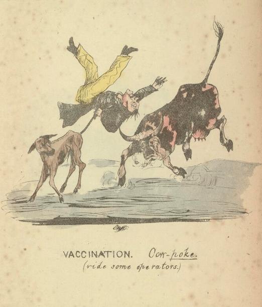 The Chirurgico Comico Vaccination.