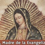 maria madre evang