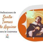 reflexiones de santo tomas