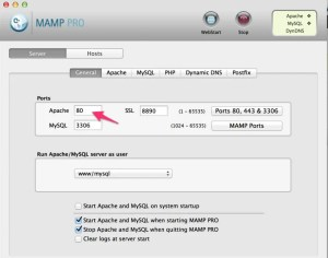 Access and test local WordPress site from smartphone/tablet with MAMP