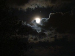 The Studentski Park Moon - April 014