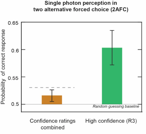 Figure 3: Probability of providing the correct response in 2AFC trials for all (brown) and high confidence responses (green). The horizontal dashed line indicates the upper theoretical limit of performance of an ideal detector operating at a physiological parameter of detection efficiency in the absence of additional noise