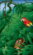 Húmeda selva tropical