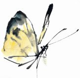 traditional_chinese_painting_butterfly_by_glf1993-d54ddzc