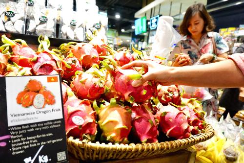 Thanh long Việt Nam bán trong siêu thị Tops Market của Central Plaza Grand Rama IX. Ảnh: Viễn Thông