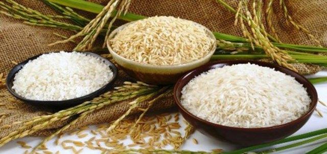 Cơm trắng và gạo lứt trong khẩu phần của người tiểu đường. Ảnh: Examveda.