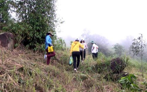 Núi Chứa Chan có phong cảnh hữu tình, thường được nhiều người chọn lựa để leo núi dã ngoại. Ảnh: Đình Hải
