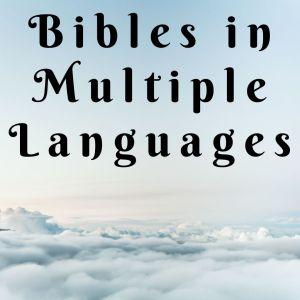 Bibles (Multiple Languages)