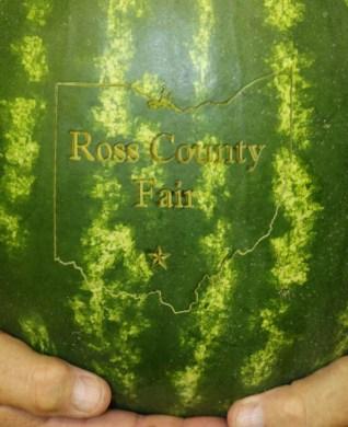 A watermelon for the Ross County Fair!