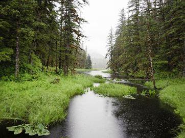 wilderness 2