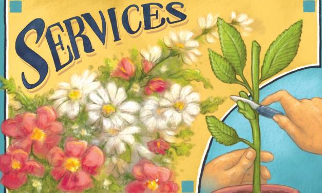 SERVICES | Best of Ventura County 2018