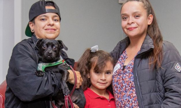 """""""SLOW WORK TAKES TIME"""" 