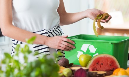 EYE ON THE ENVIRONMENT | Organic waste the focus for recycling in 2020