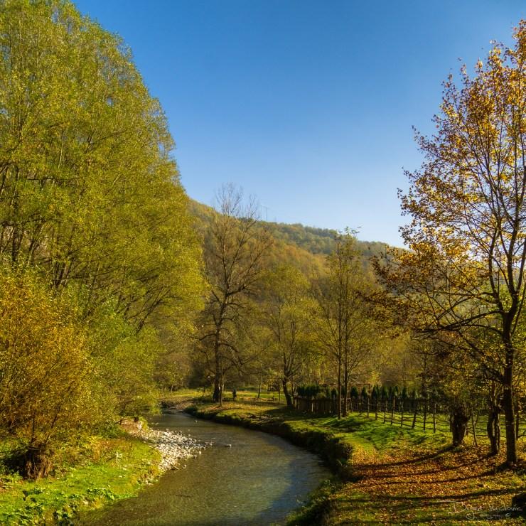 Gorge of river Gradac