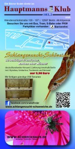 Flyer aquaboers rückseite