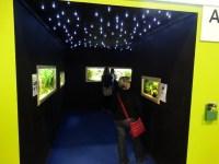 Der Verein Anubias hatte die Aquarien in einem Tunnel angeordnet
