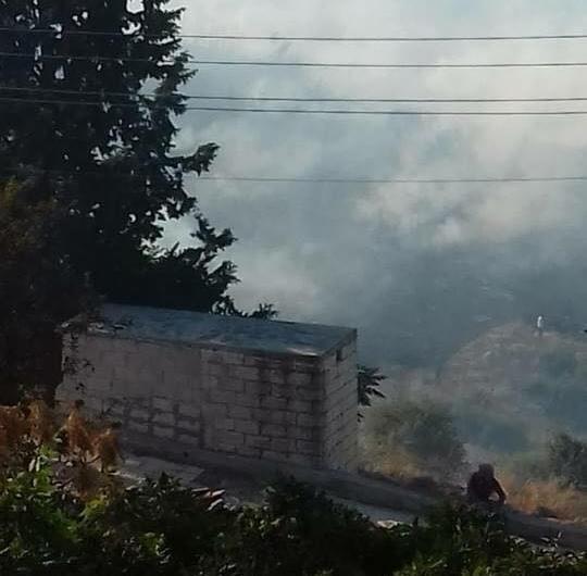 عفرين: حرائق جديدة للغابات والكروم في تلة كوركا
