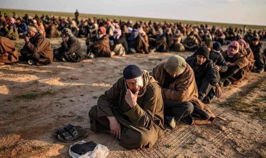 """واشنطن بوست: هزيمة """"داعش"""" في سوريا على يد """"الأكراد"""" شكلت التهديد الحقيقي للعدالة والتنمية التركي"""