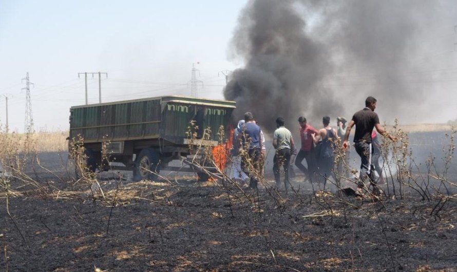 منطقة الإدارة الذاتية تمنع شحنات القمح من الدخول إلى مناطق سيطرة الحكومة السورية