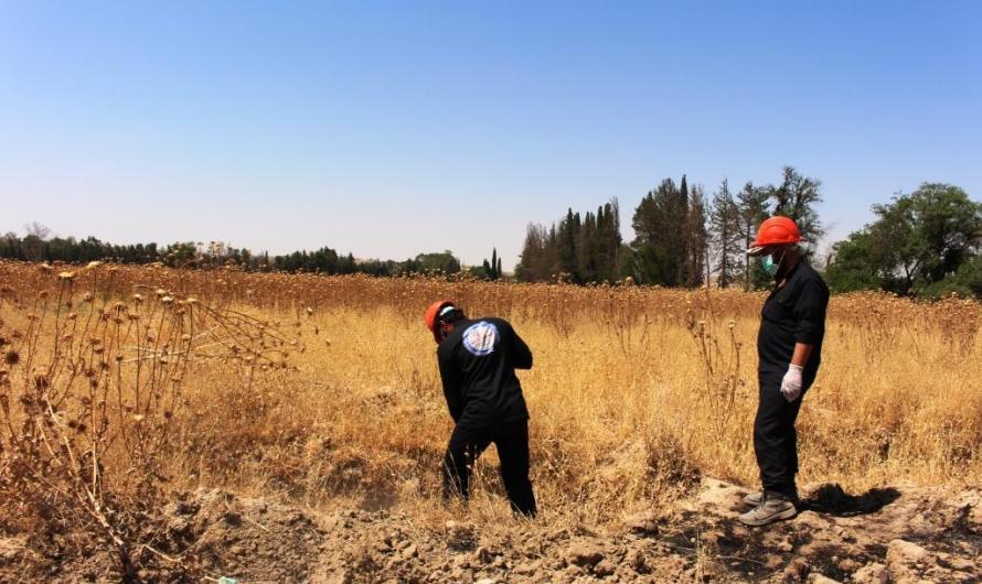 العثور على مقبرة جماعية في الرقة تضم 190 جثة