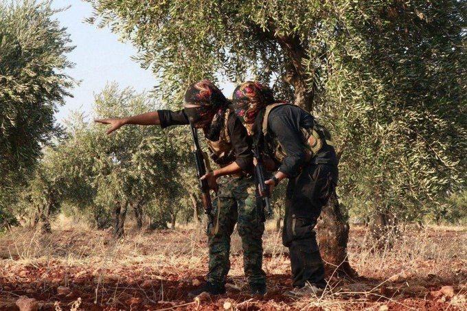 تجدد الاشتباكات بين القوات التركية والكردية في ريف حلب