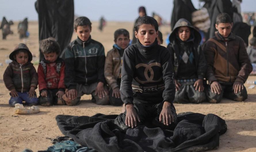 27 ألف طفل في مخيم الهول شمال شرق سوريا … دولهم ترفض اعادتهم