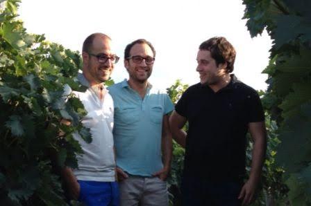 Viñas Zorzal