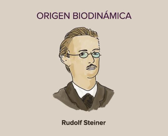 rudolf steiner vinos biodinamicos