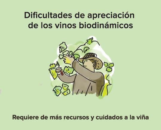 vinos biodinamicos