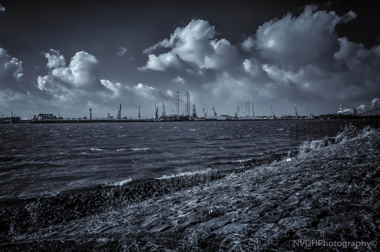 View on Maasvlakte - Rotterdam-4