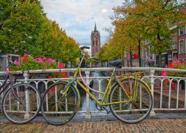 Delft-4
