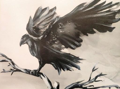 Etude de corbeau à l'encre de chine
