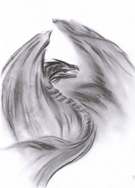 Etude d'un dragon au charbon