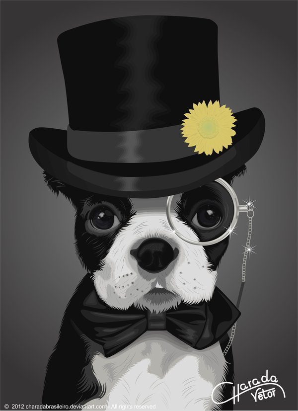 Sir Dog by Charada Brasileiro