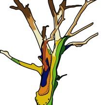 spirit_tree-01